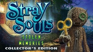 Stray Souls: Stolen Memories - Review