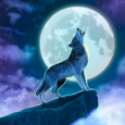 Hidden Objects: Twilight Town: Review